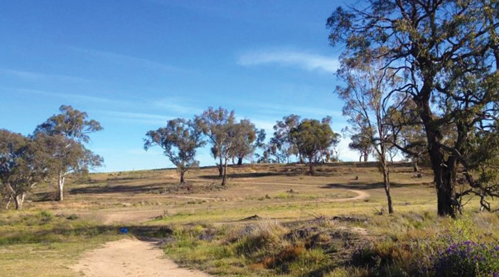 Economic appraisal of Bathurst Bike Park